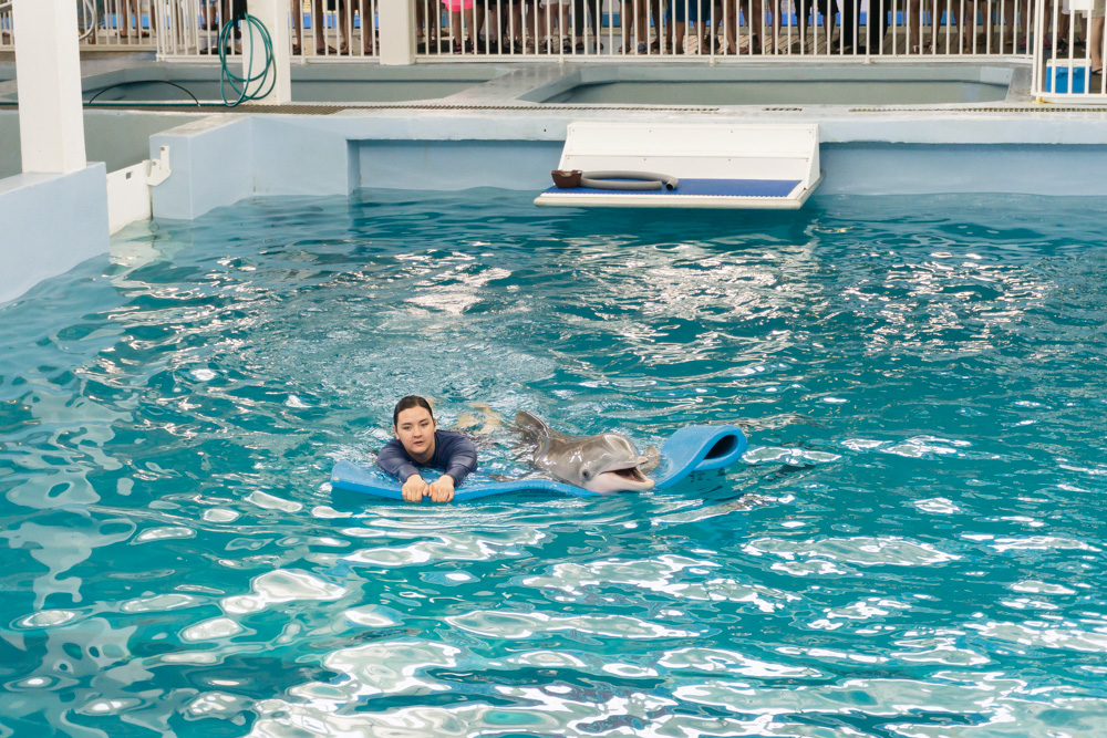Clearwater Marine Aquarium | Winter