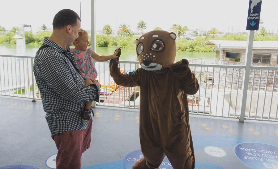 Clearwater Marine Aquarium | My Daughter's Favourite Otter