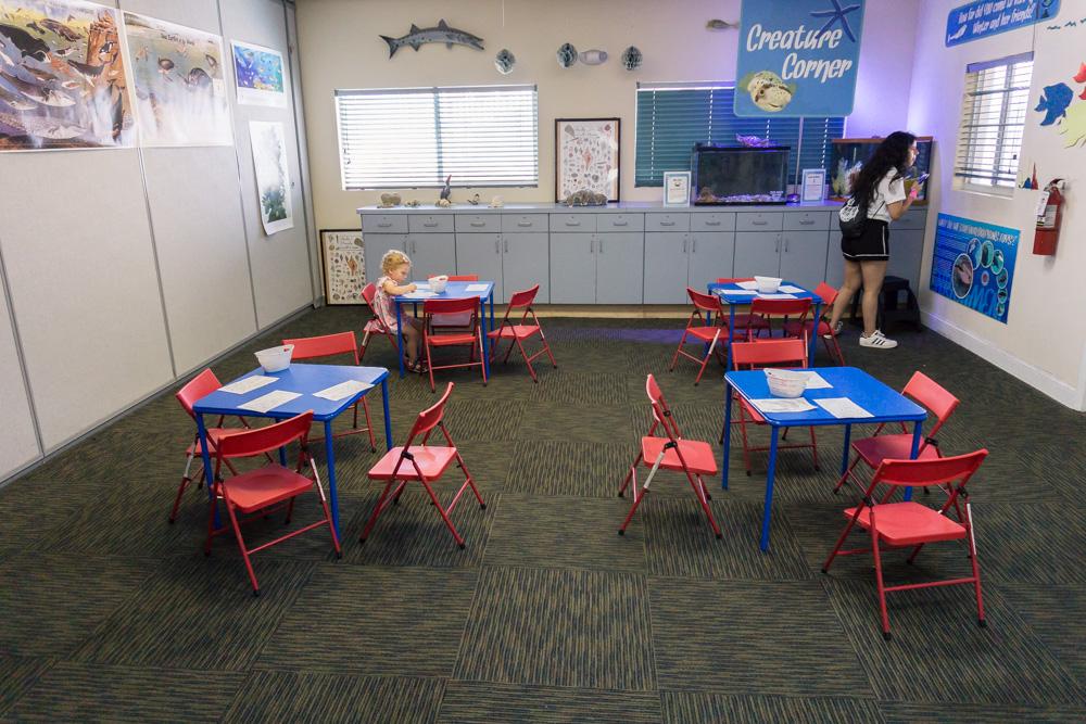 Clearwater Marine Aquarium |Education Centre | Colouring Room