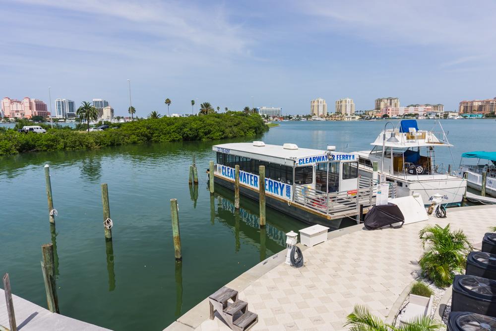 Clearwater Marine Aquarium |Clearwater Ferry