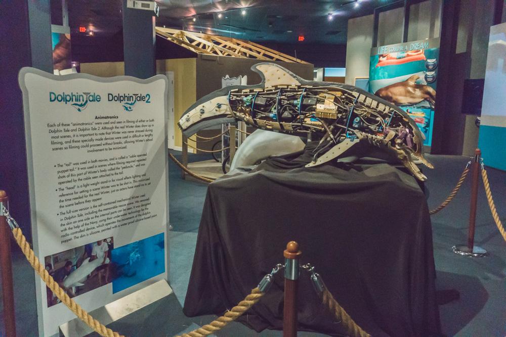 Clearwater Marine Aquarium |Robotic Winter