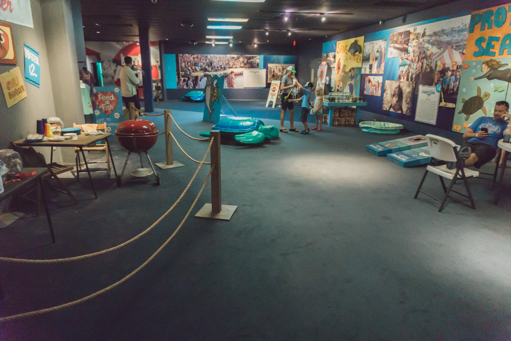 Clearwater Marine Aquarium | Kids Activity Area