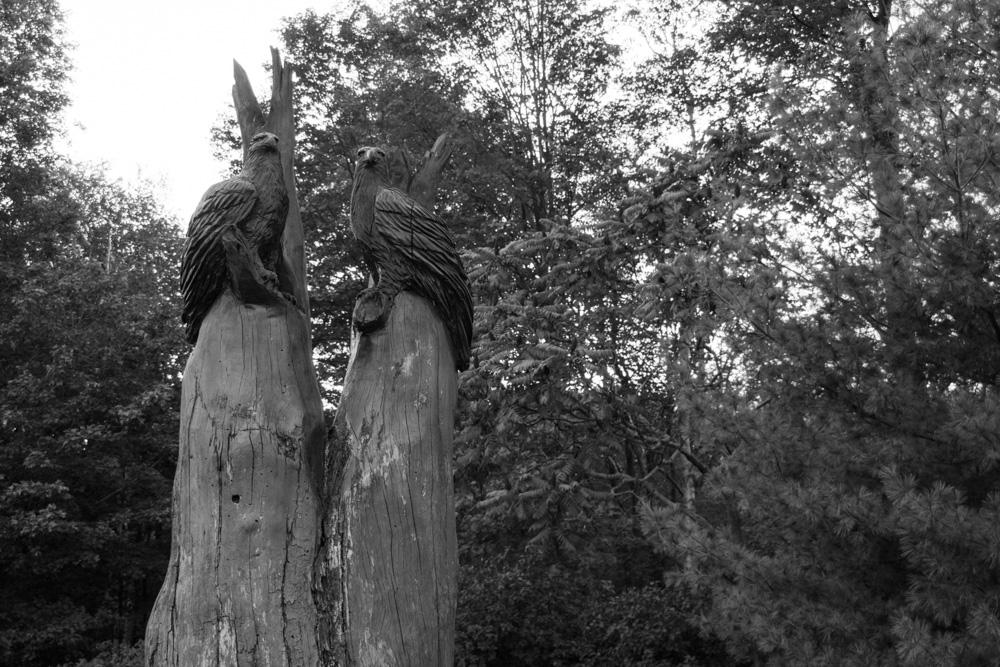 Riverwood Conservancy