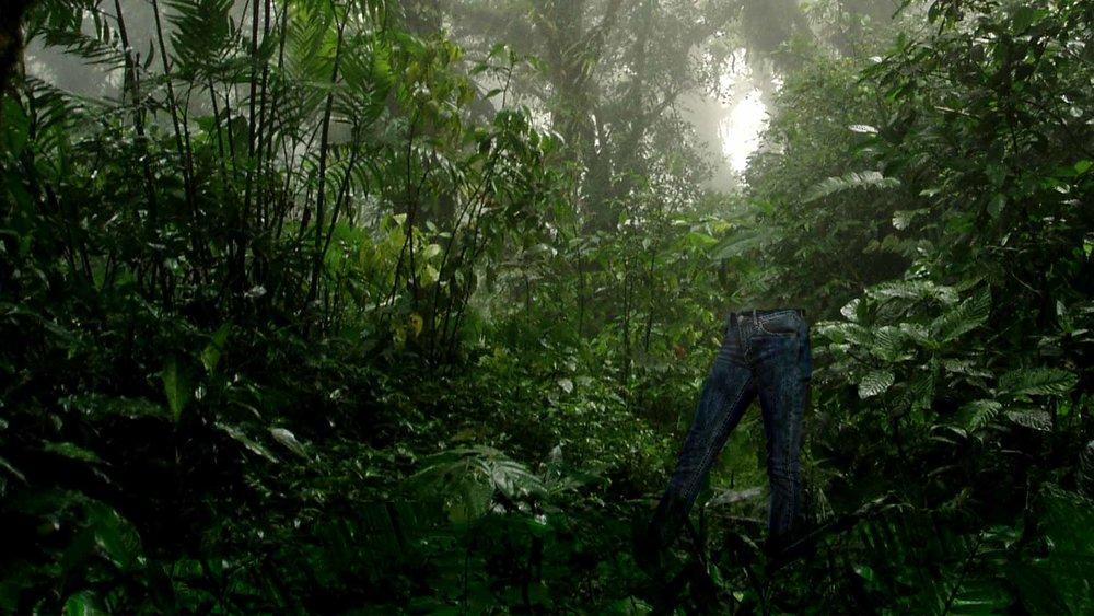 forest 2v2.jpg