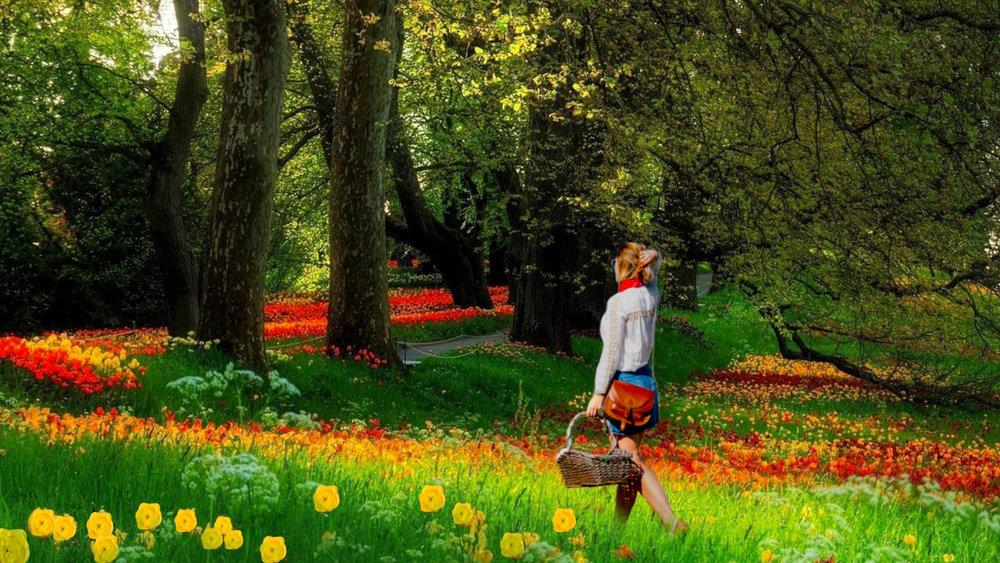 flowerframe 1.jpg