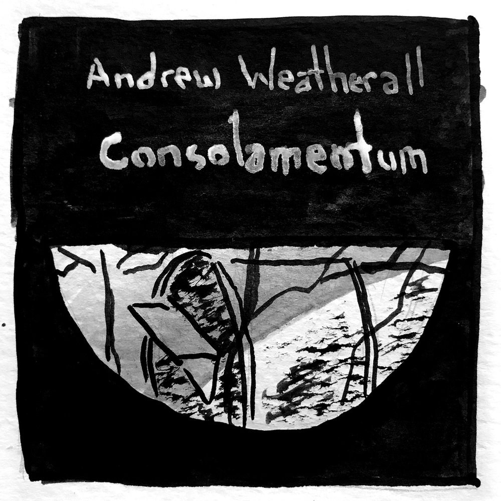 Andrew Weatherall Cons0lamentum