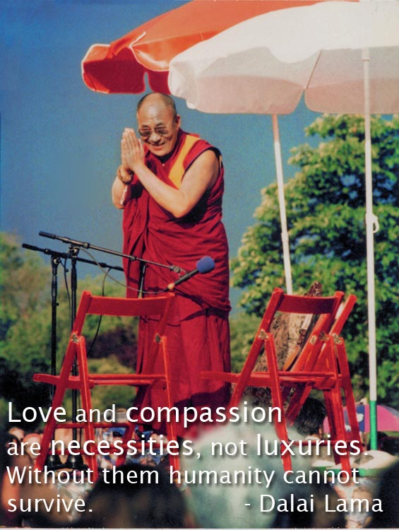 Dalai Lama UN Human Rights conference Vienna 1993 with quote.jpg