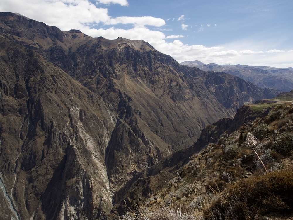 Condors flying below in the Colca Canyon.