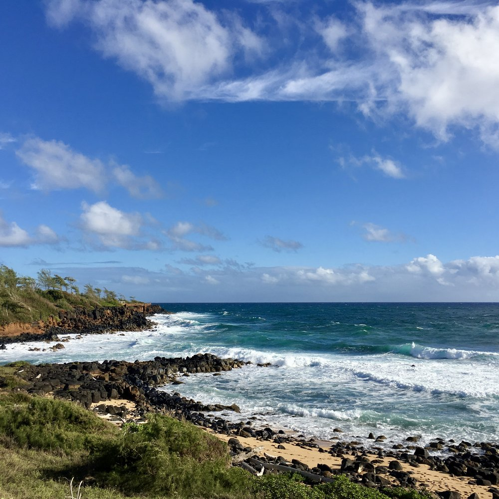 Biking along the Kauai path