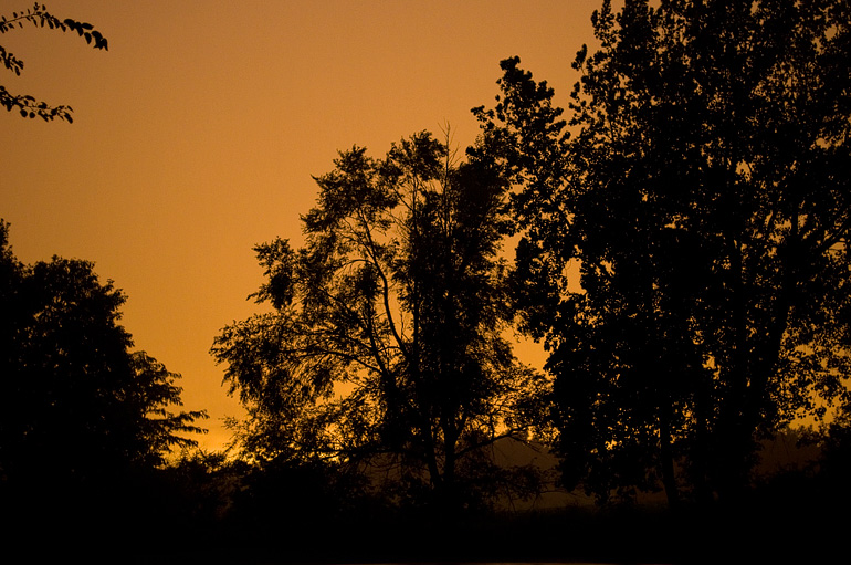 Photo of a fiery orange sky taken in a field in Panora, Iowa.