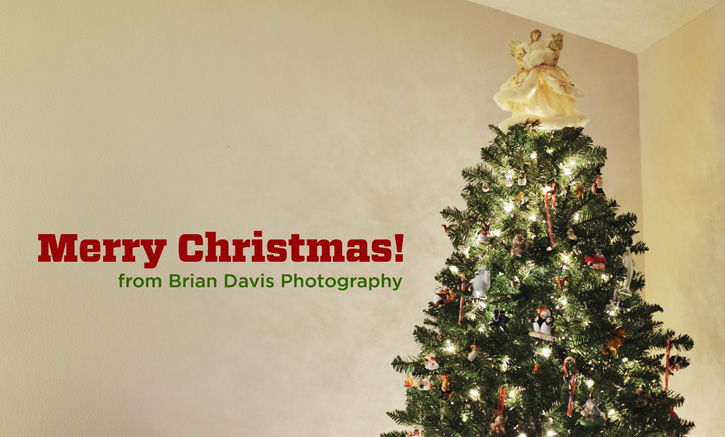 Christmas Tree with Merry Christmas from Brian Davis Photography