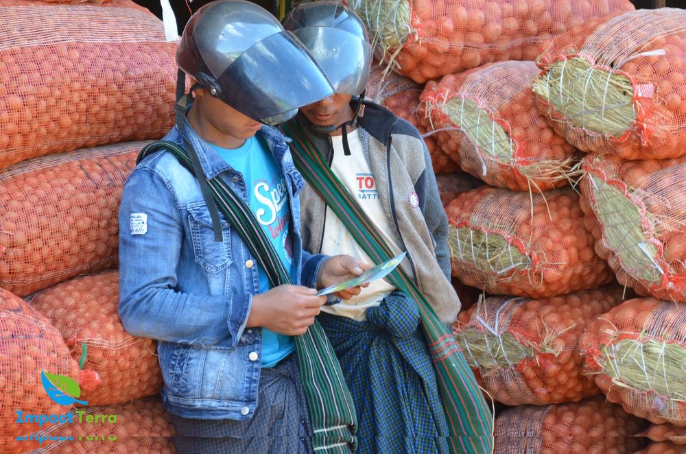 Markets - Improved market transparency and direct connection between smallholder farmers and buyers