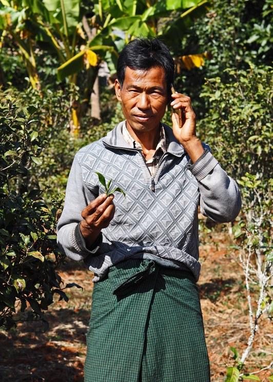 U Ohn Maung (Tea/ginger farmer) -