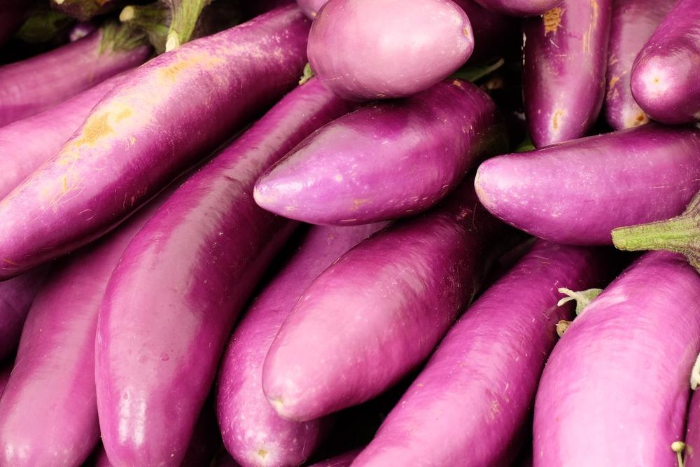 Eggplant, Orient Express