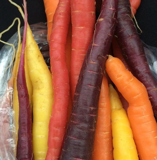 If anything is right in this world, it is these carrots  #rainbowcarrots