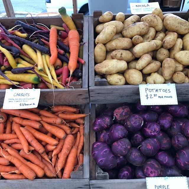 Market stand on point this morning thanks to our wonderful apprentices!!! @vermontfarmersmarket #rainbowcarrots #purplepotatoes #hotpeppers #tomatoes