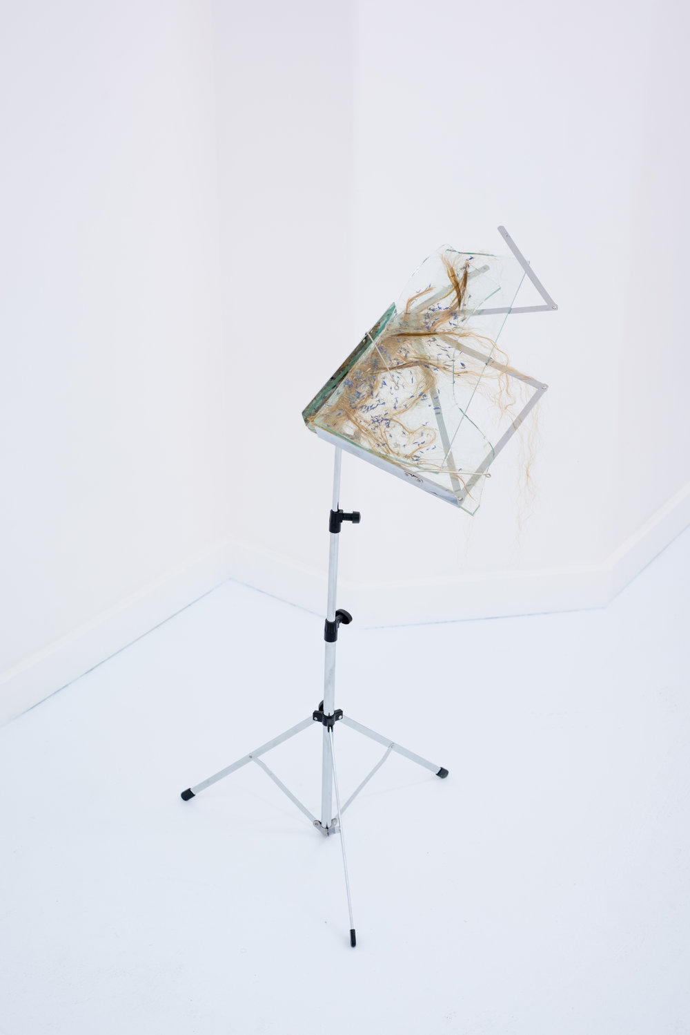 Soliloquy,  2016, music stand, sheet glass, epoxy, human hair, and dried cornflower petals, 36 x 17 x 22 inches