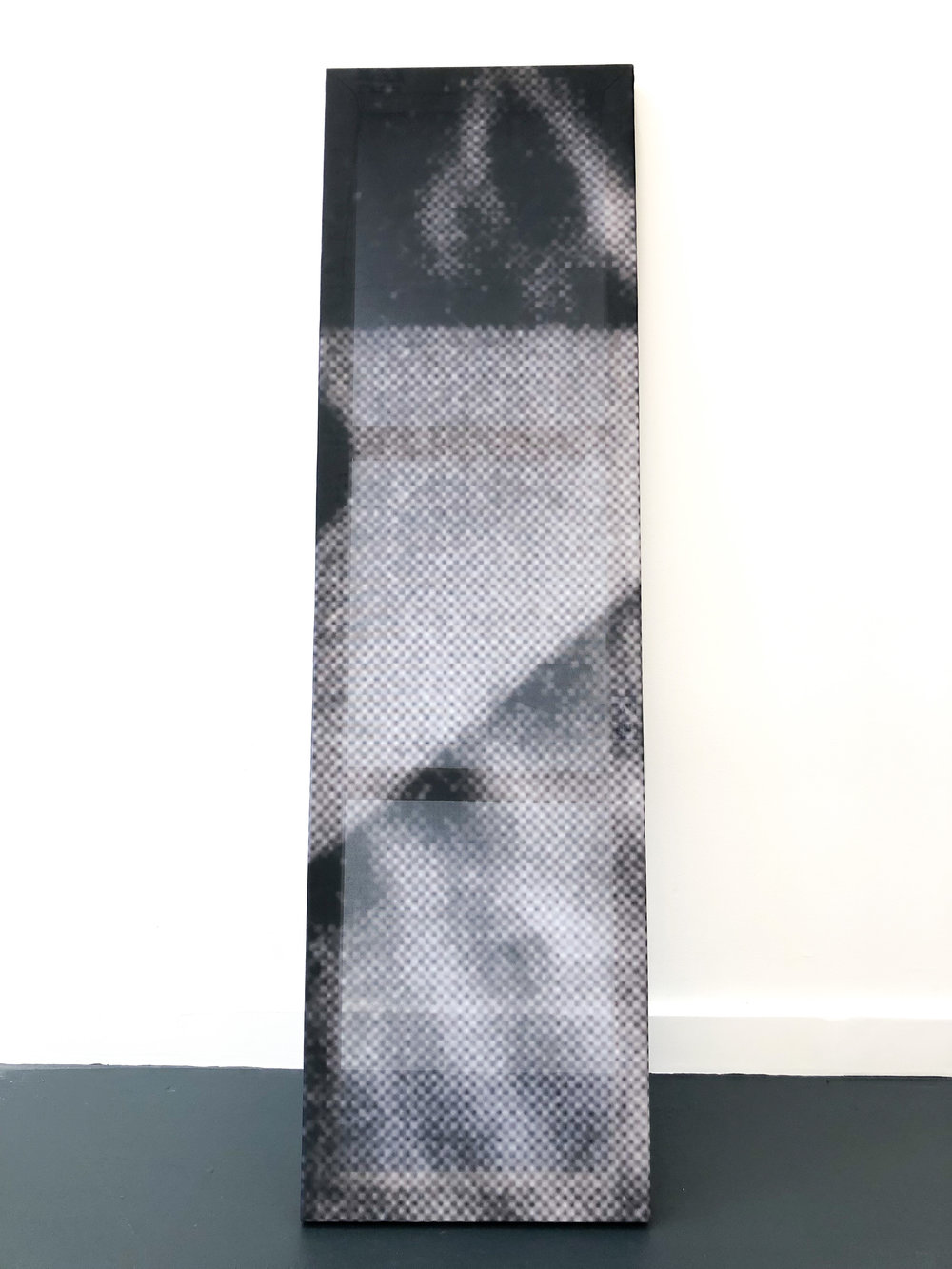 Wandering among objects (ripple tank) I , 2018, Pair of stretched digital prints on fabric, 53.5 x 15 inches