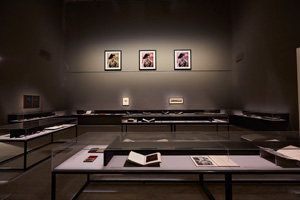 6 Suspending disbelief: 'The photograph and Australia' by Claire Capel-Stanley, Sydney The photograph and Australia, exhibition view, Art Gallery of New South Wales (AGNSW), Sydney, 2015, with archival display and artworks by Tracey Moffatt; photo © AGNSW: Jenni Carter