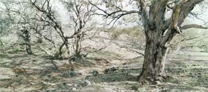 4 Photography and Place Australian landscape photography: 1970s until now ADAM GECZY   Rosemary Laing,  After Heysen , 2004, C-type photograph, 110 x 252cm. Collection: The Australian Club, Melbourne. Image courtesy the artist and Tolarno Galleries, Melbourne.  © Rosemary Laing.