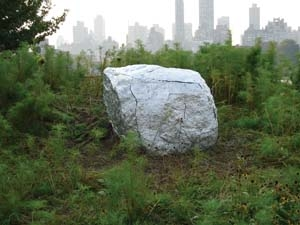 9. New York New York DENISE GREEN Nicholas Herman, Differentiation and correlation of revelation, 2006, metallic FGR. On display in the 2006 Emerging Artist Fellowship Exhibition, Socrates Sculpture Park, Long Island, New York, until March 2007. Courtesy of the artist and the Socrates Sculpture Park. Photo Chris Baker.