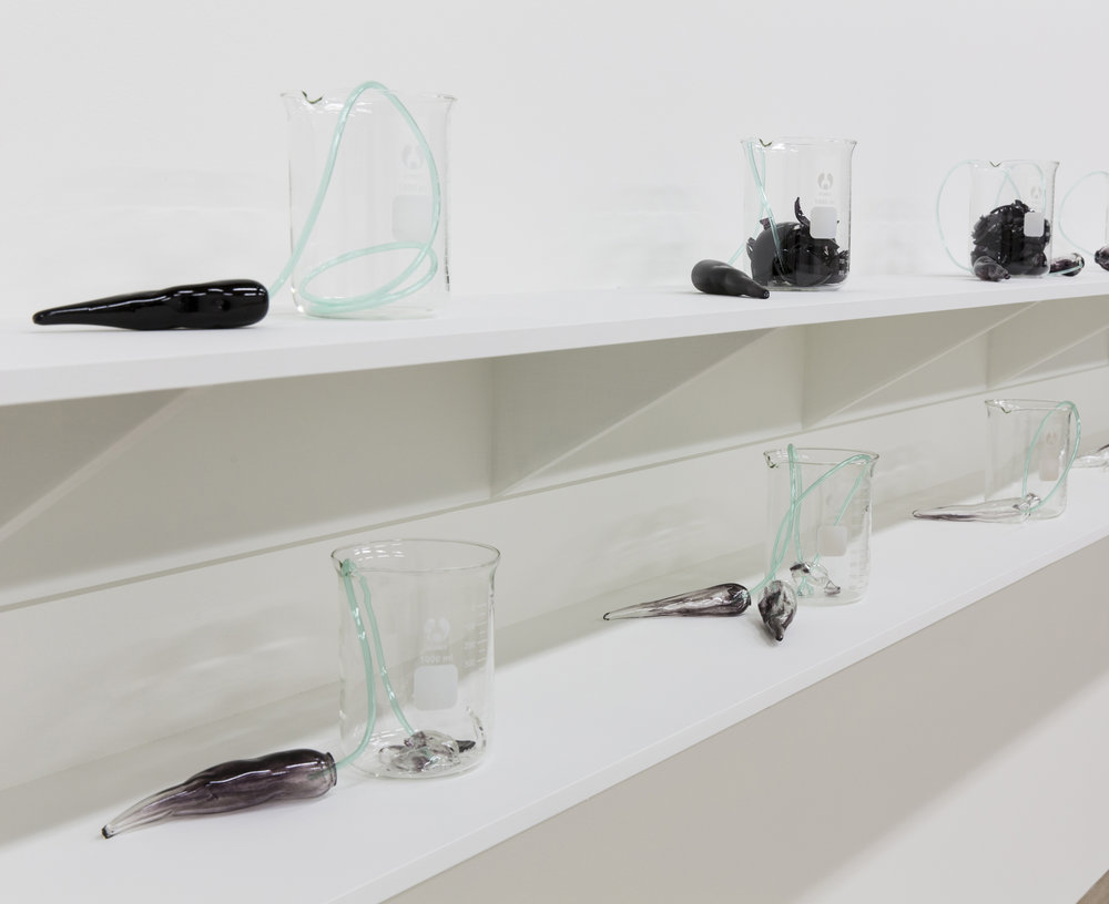 Yhonnie Scarce, The More Bones the Better, 2016, installation view; image courtesy the artist and Post Office Gallery, Federation University Australia
