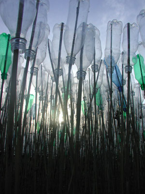 8. Ten Days on the Island 2005: The exhibition round-up by DANIEL THOMAS   Lucia Usmiani,  Clatter  (detail), 2005, installation of plastic bottles and bamboo stakes on Goldie Street, Wynyard. In the exhibition  HWY1 #2 , at various locations on the Bass Highway, Tasmania, from 1 to 10 April. Photo Richard Muir-Wilson.