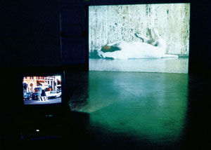 12. Finola Jones: Artificially reconstructed habitatsat the Canberra Contemporary Art Space by EVE SULLIVAN   Installation photograph of Finola Jones: Artificially reconstructed habitats, 2004, at the Canberra Contemporary Art Space.