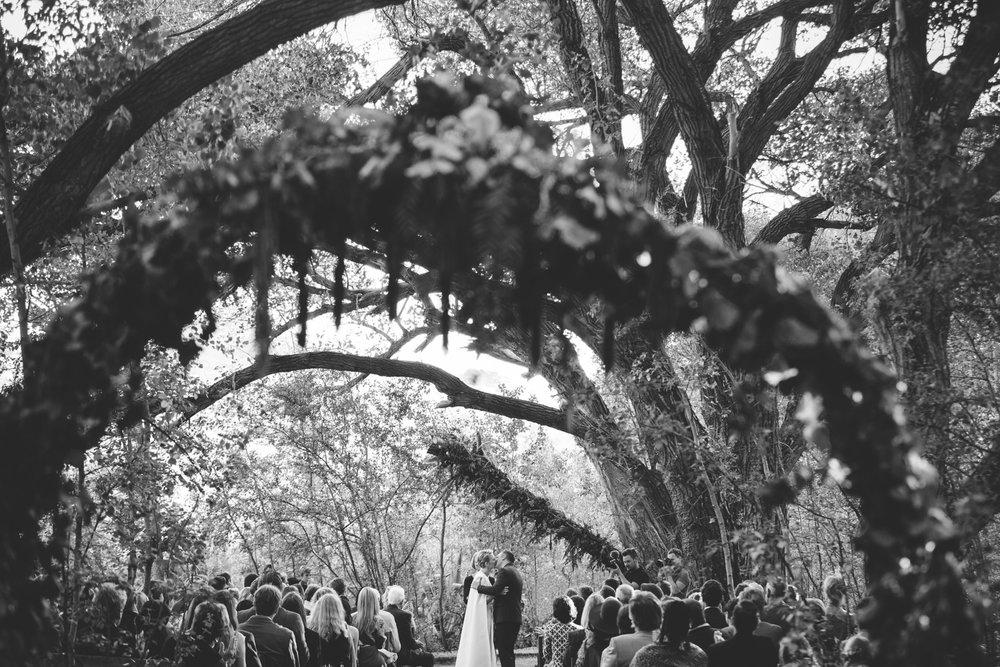 Jolynn_Dylan_weddingcharlie_ray_photography_nieu_bethesda_south_africa_karoo_filmmakers_forest_outdoor_reception_street_0284.jpg