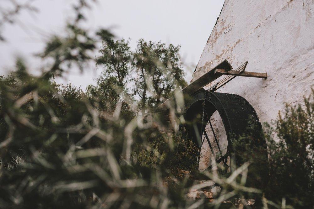 Jolynn_Dylan_weddingcharlie_ray_photography_nieu_bethesda_south_africa_karoo_filmmakers_forest_outdoor_reception_street_0482.jpg