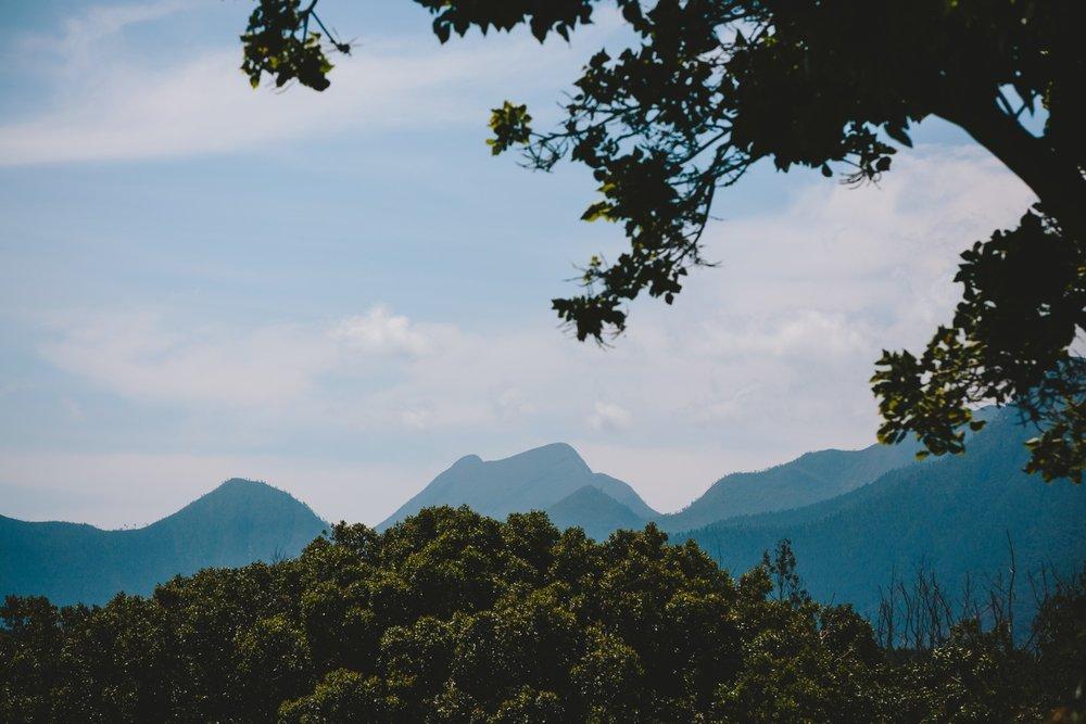 wearecharlieray_lauren_rollie_runaway_romance_rebecca_misty_mountain_titsikamma_garden_route_ferns_forest_storms_river_0011.jpg