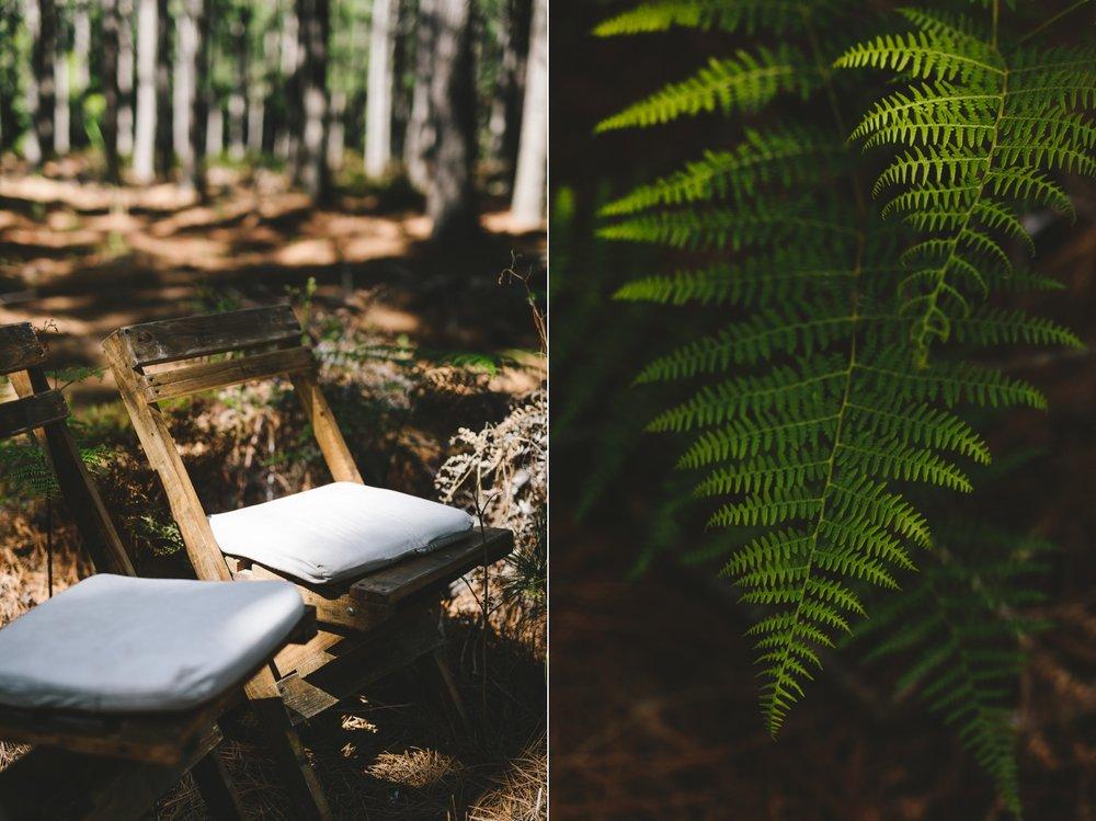 wearecharlieray_lauren_rollie_runaway_romance_rebecca_misty_mountain_titsikamma_garden_route_ferns_forest_storms_river_0026.jpg