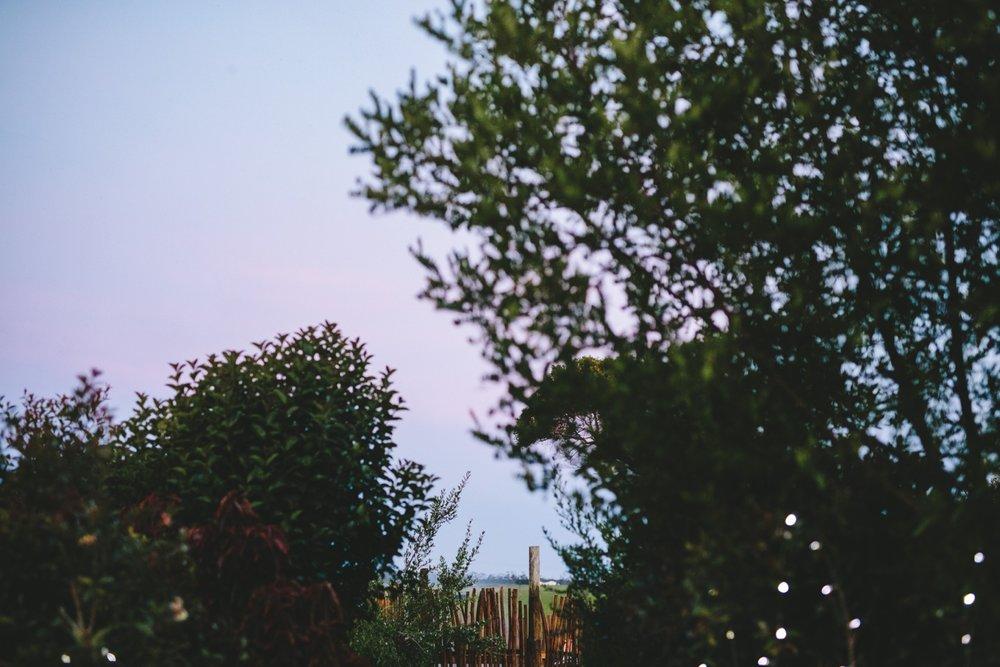 wearecharlieray_lauren_rollie_runaway_romance_rebecca_misty_mountain_titsikamma_garden_route_ferns_forest_storms_river_0135.jpg