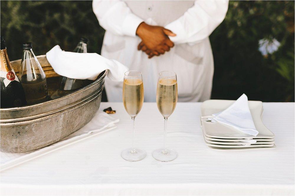 Wedding-elopement-destination-Cape-Town-South-Africa-Garden-Route-couple-photographer53.jpg