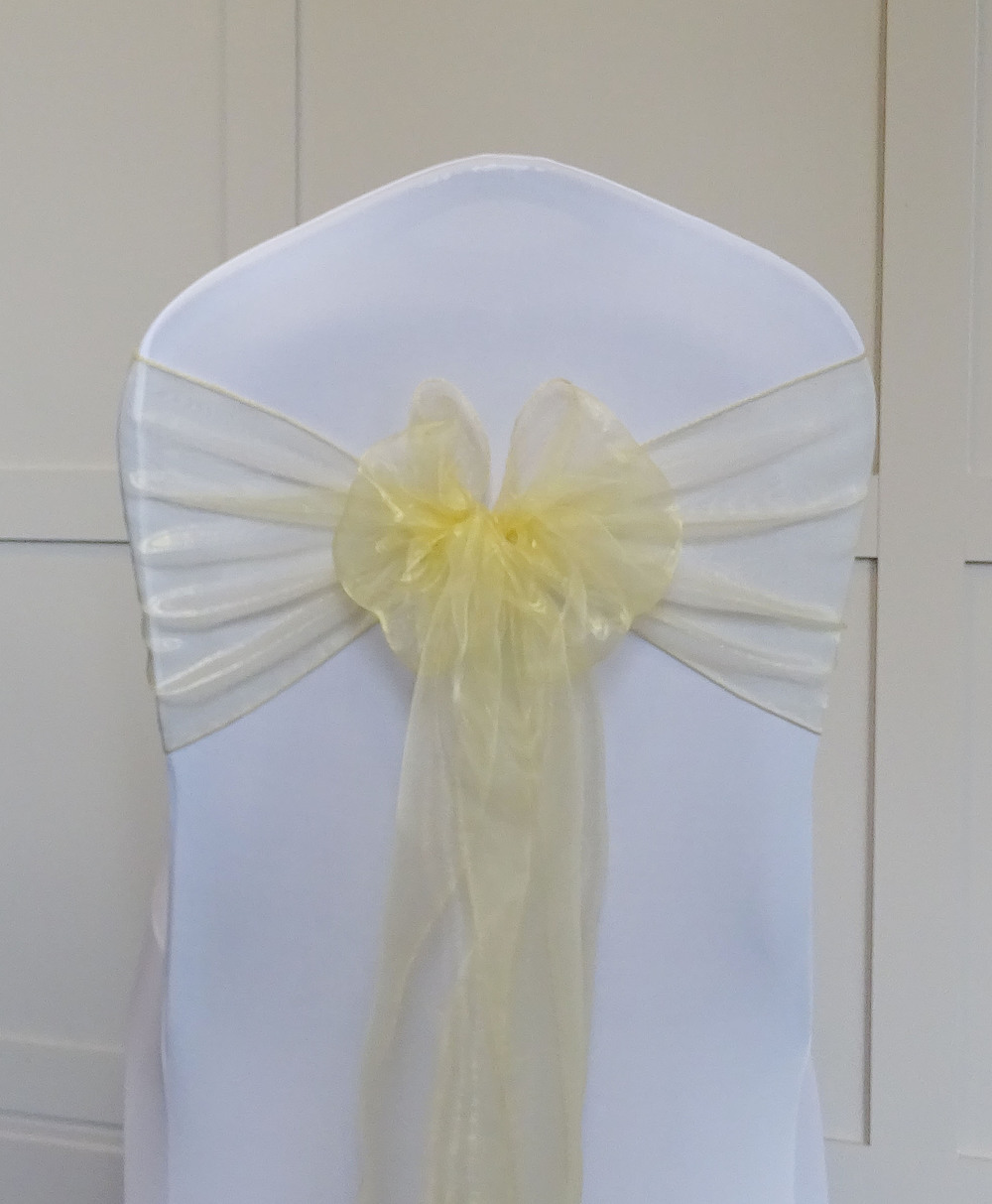 Pale Gold Organza