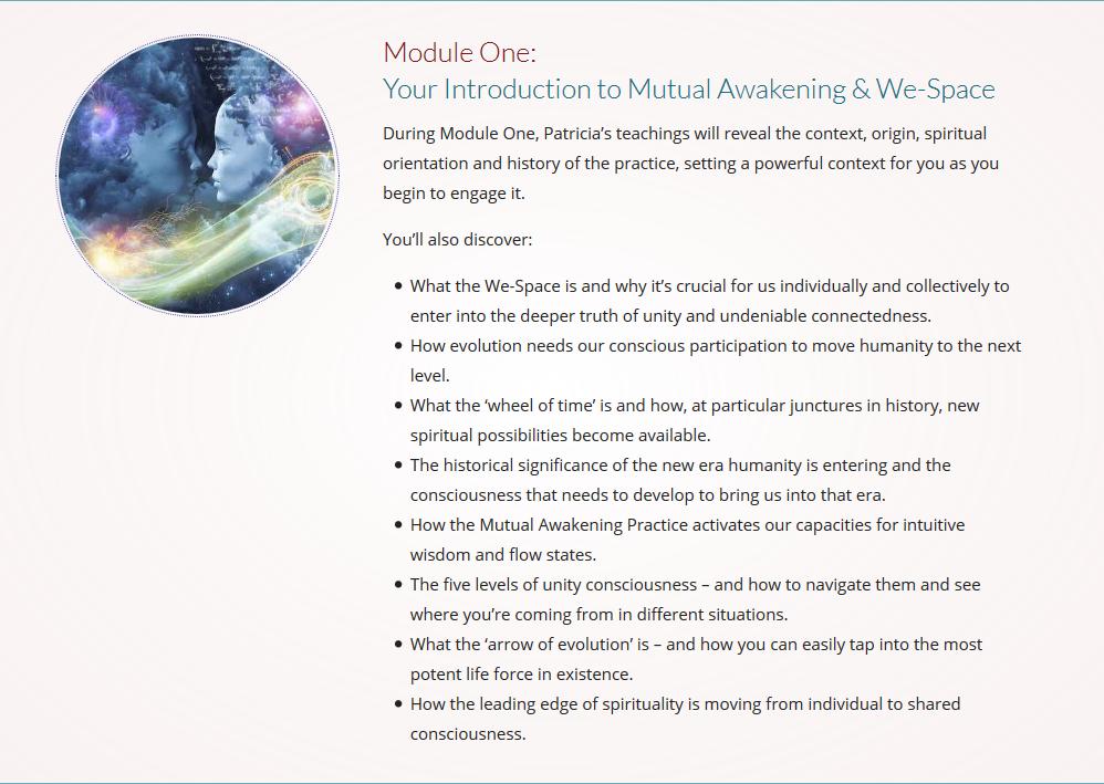 Screenshot_2018-10-05 Mutual Awakening Course 2018 Evolutionary Collective(10).png