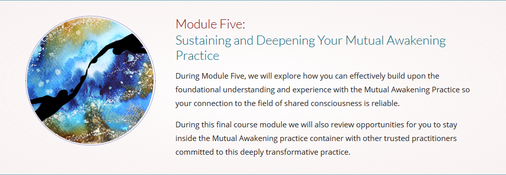 Screenshot_2018-10-05 Mutual Awakening Course 2018 Evolutionary Collective(14).png