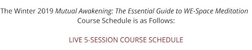 The Winter 2019 Mutual Awakening_ The Essential Guide to WE-Space Meditation LIVE 5-SESSION COURSE SCHEDULE(1).png