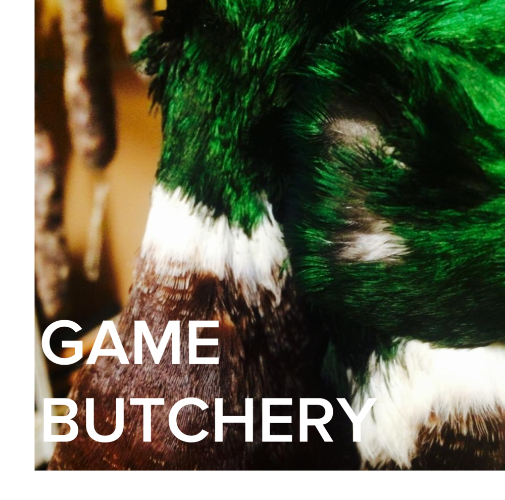 COURSE - Game Butchery