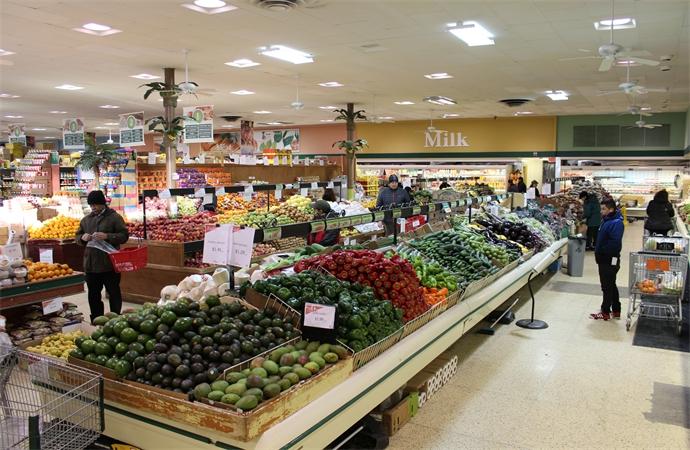 Large Variety of Vegetables-1.jpg