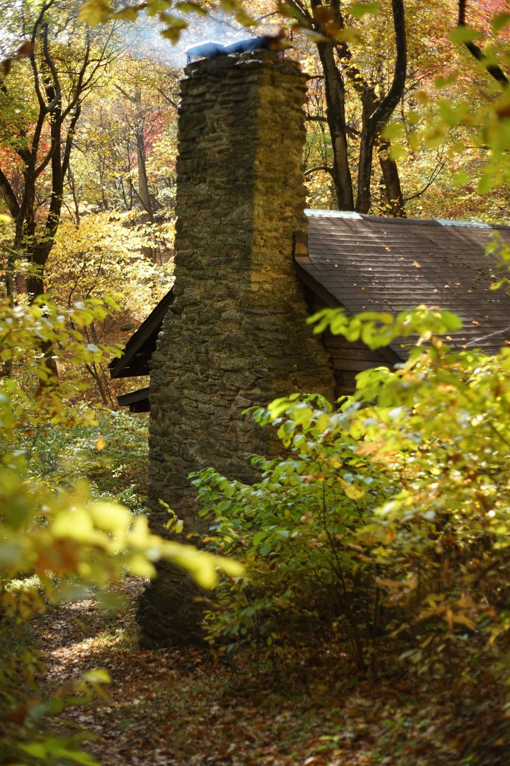 We did get to run into a neat little cabin (Jones Mountain Cabin) while on our trek. Not creepy at all. October 25, 2015