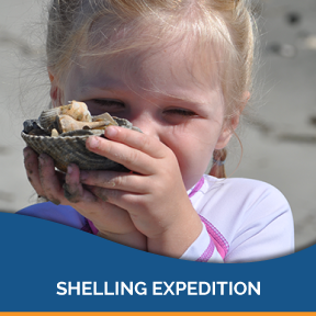 Let's journey to beautiful undeveloped Morris Island! We'll hunt for shark teeth, artifacts, shells and sea treasures. Learn More
