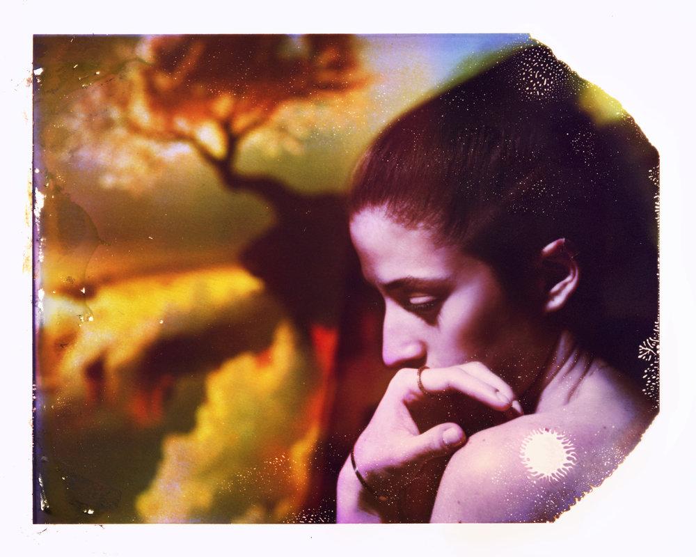 Polaroid-Olli-oriental1pp.jpg