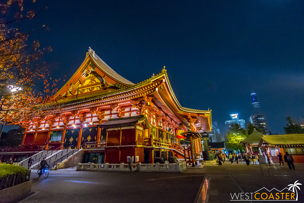 You couldn't tell in this night shot, but Senso-Ji Temple is an extraordinarily busy and tourist-oriented temple near Akihabara.