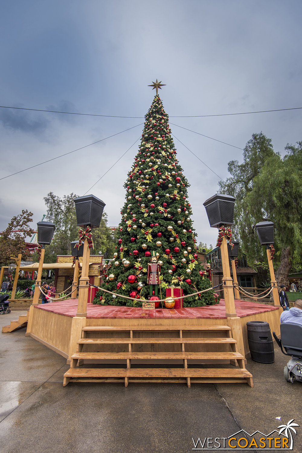 Calico Park's Christmas tree rises tall above Ghost Town.