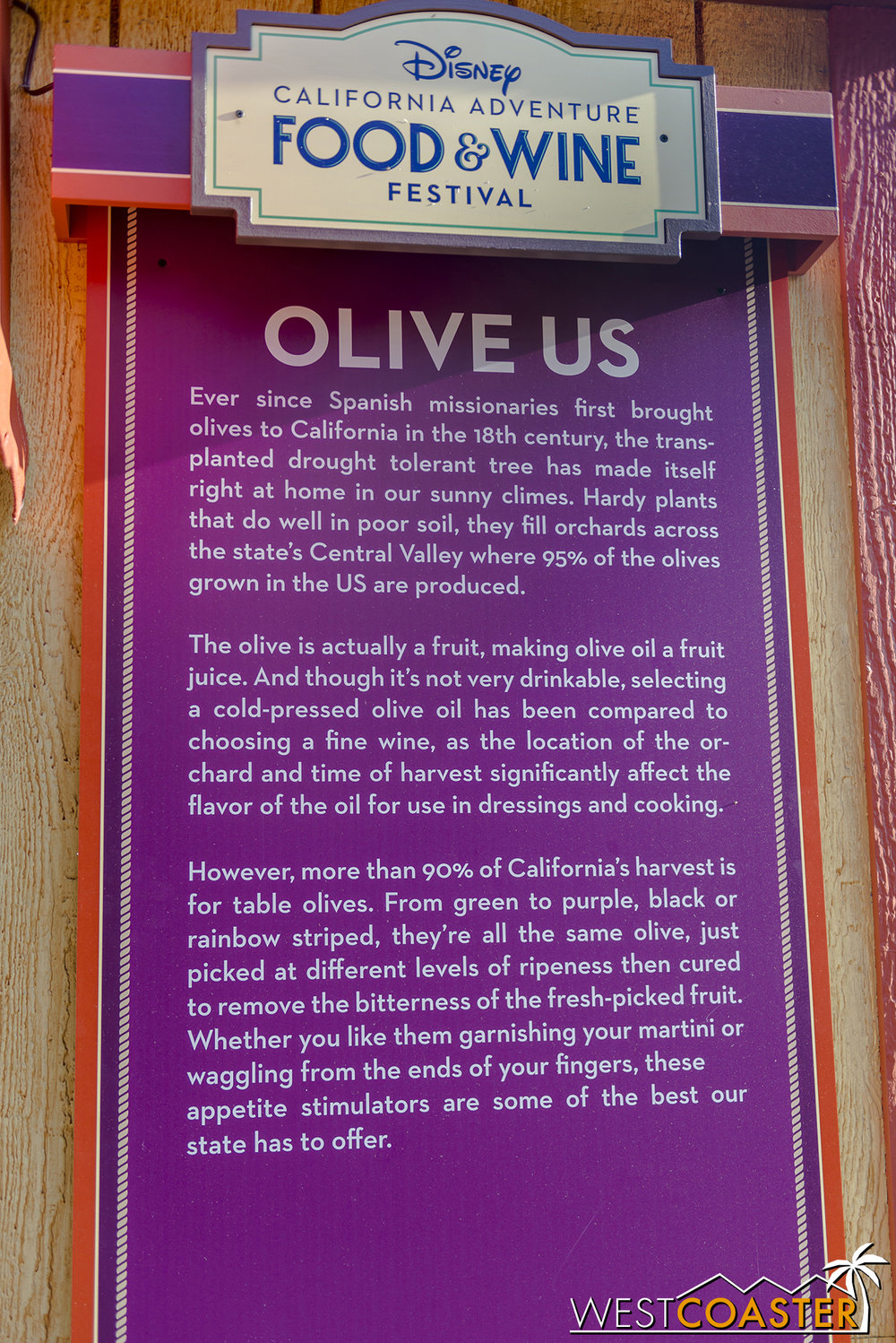 DLR-17_0314-H-Descriptions-06-OliveUs.jpg