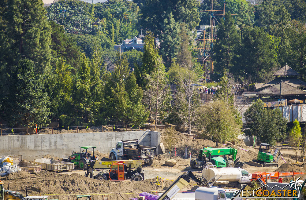 Yes, like a line of upright broccoli, they've started planting trees on this walled berm behind the rerouted Rivers of America to maintain the rustic ambiance.