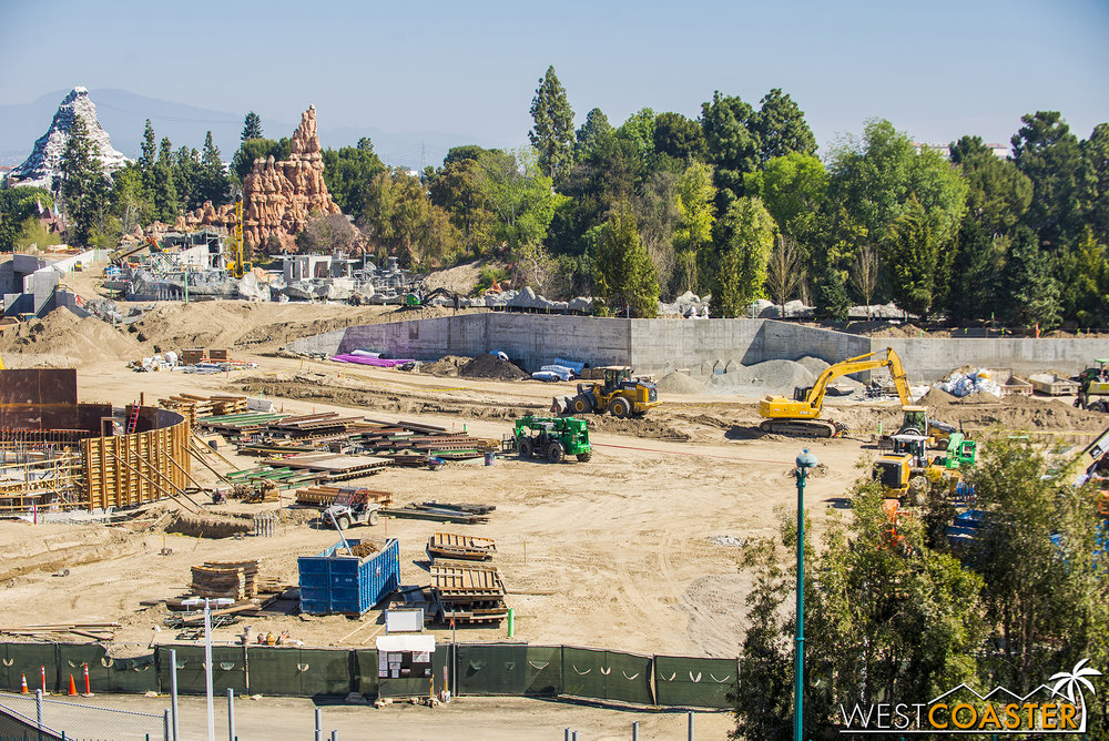 These leafy greens will provide plenty of fiber for the Rivers of America when they reopen this summer.