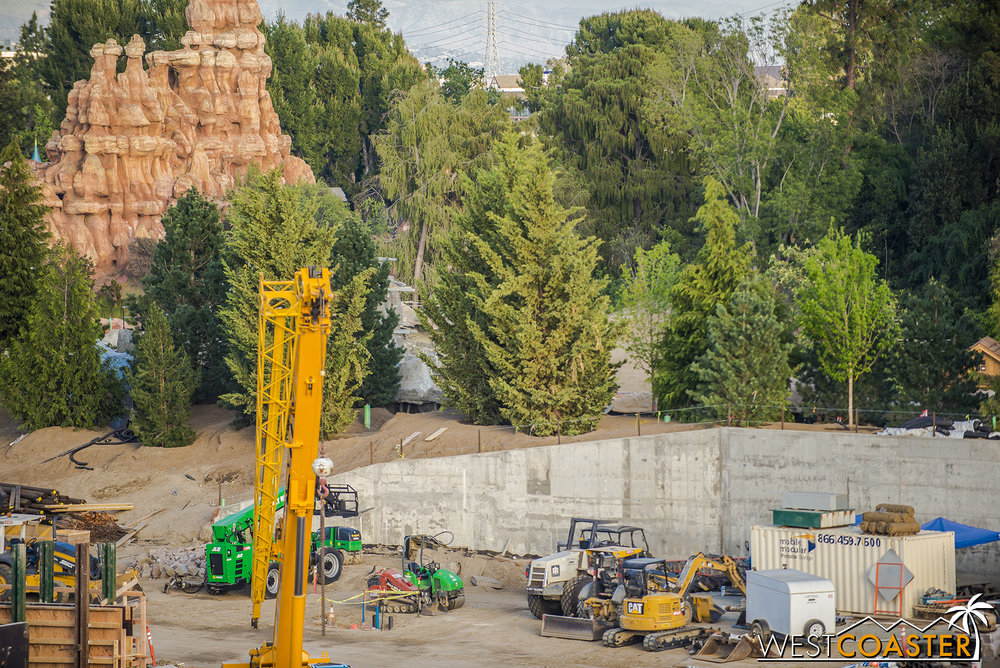 "The berm separating the Rivers of America from ""Star Wars"" Land is getting pretty dense now.  You'd think they'd pause putting up trees for rest."