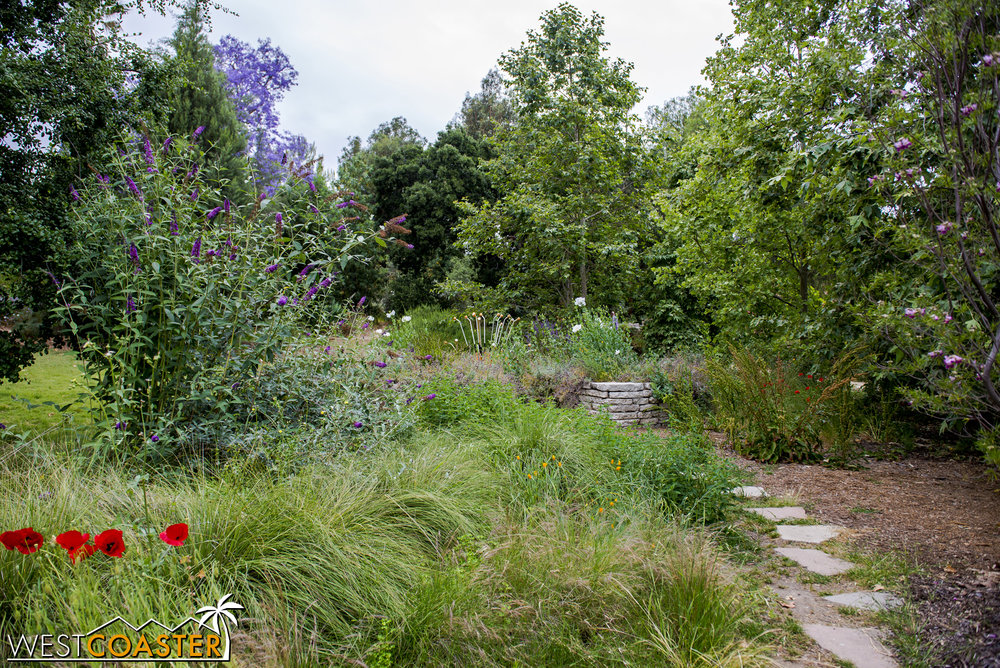 For a garden in a residential setting, the Arlington Garden can feel decidedly natural.